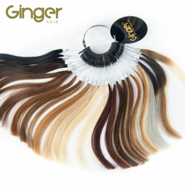 Mostruário de cor da marca Ginger